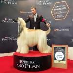 Multi campeón Escarlata de Biebrich Philip J. Fry