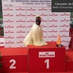 Vladi consigue el título de campeón de Portugal
