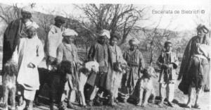 Afganos del criadero Ghazni